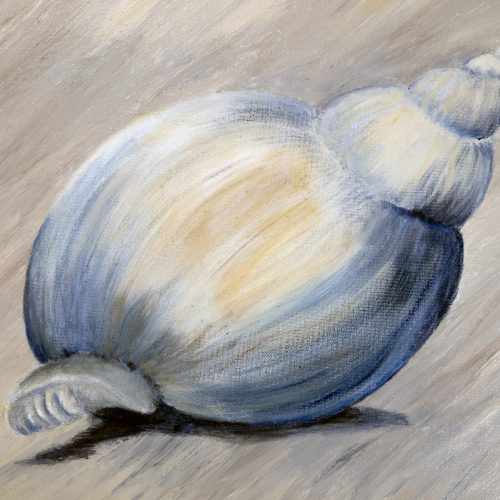 Shell acrylic painting